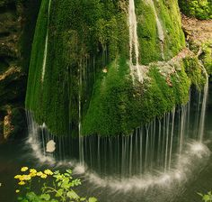 Unique waterfall in a thick forest in Romania - so cool!