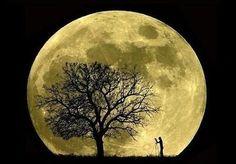 the magical moon