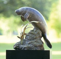 """""""Upon the Suwannee"""" - Sculpture of manatee at Tallahassee Memorial Hospital in Tallahassee, Florida. By Sandy Proctor."""