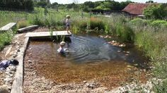I like this idea .... building your own organic pool ?   Video Credit, thanks to  organicpools
