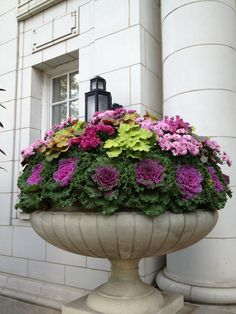 flower pots fall, ornament kale, beautiful garden planters, fall flowers, potato vine, fall planters, fall urn, fall home, container gardening