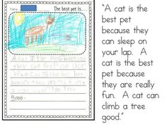 Mrs. Wills Kindergarten: Writing Opinions  (Lesson Ideas and Samples)