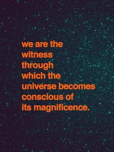 """Through our eyes, the universe is perceiving itself. Through our ears, the universe is listening to its harmonies. We are the witnesses through which the universe becomes conscious of its glory, of its magnificence.""  -Alan Wilson Watts"