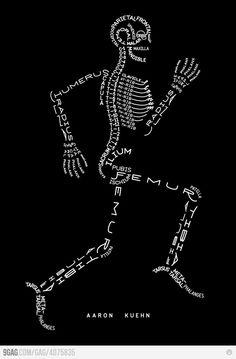 Human bones word art