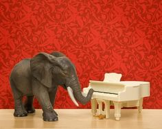 Elephant print bright red music room piano by Wild Life Prints in etsy.com!