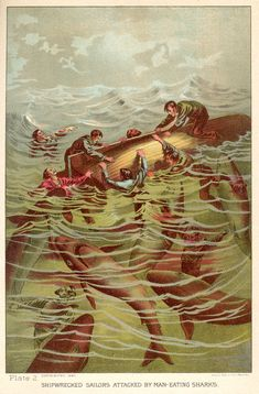 """""""Shipwrecked sailors attacked by man-eating sharks"""" - illustration from Sea and Land: An Illustrated History by JW Buel, 1887"""