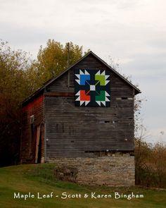 Maple Leaf on a barn in Caledonia MN