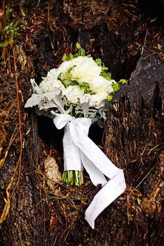 Woodsy bouquet: http://www.stylemepretty.com/2010/02/12/a-twilight-inspired-tablescape/ | Photography: Meg Perotti - http://www.megperotti.com/