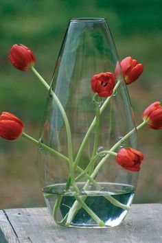 Multi-hole glass bud vase