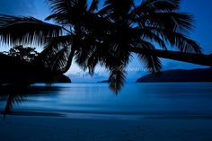 Maho Bay St. John at night
