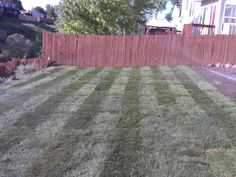 Landscaping In Colorado Springs Monument Denver And