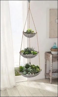 140+ beautiful hanging plants ideas for home decor 25 | terinfo.co