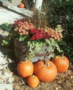 My front  fall decor last year! wine barrels, whiskey barrels, basket, fall flower