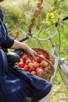 Picking apples....