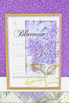 Lavender Hydrangea | Flickr - Photo Sharing!
