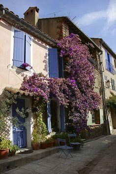 Wisteria Lane in Grimaud, Provence