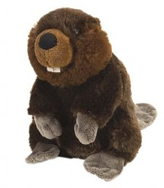 Cuddlekins Mini Beaver (8-inch) at theBIGzoo.com, a family-owned toy store.
