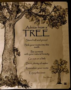 tree quote... in the fall when we do nature sketches and trees/forest: combine poetry with sketches
