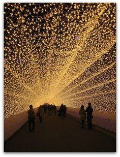 Tunnel of Lights, Japan