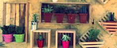 Nichos para plantas