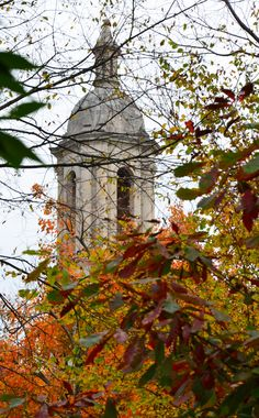 Autumn leaves and lacy branches framed Old Main Bell Tower. What a mix of bright colors and great architecture.