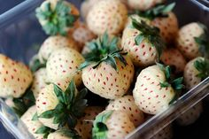 PINEBERRIES aka white strawberries    They are a mix of pineapple and strawberries.     http://en.wikipedia.org/wiki/Pineberry