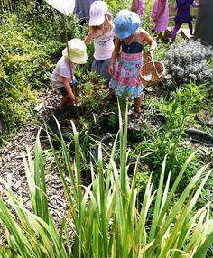 veggie gardens, arti idea, reggio emilia, outdoor fun, garden idea, blog, teacher, children play, preschool