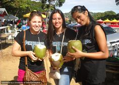Blue Hens Amanda, Gina and Zara sip on fresh coconut water during the semi-final rounds of a steel band competition in Tobago!