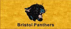 Bristol Panthers Logo Rug
