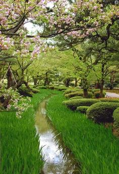Kenroku-en Garden / Kanazawa, Japan
