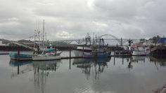 Home...Newport Oregon