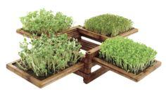 miniature garden by pylones.
