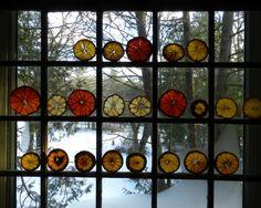 by elizabeth bunsen window, christma