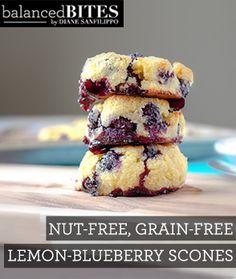 Lemon-Blueberry Scones #glutenfree #garinfree #paleo