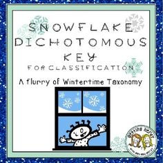 My students had fun classifying snowflakes in class for our unit on classification and taxonomy!