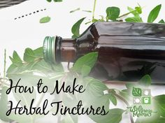 How to Make Herbal Tinctures from Dried Herbs