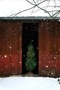 Christmas in an American Barn.