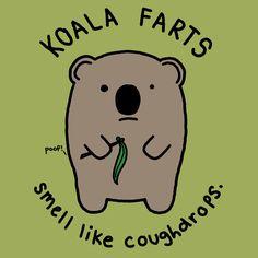 Koala Farts t-shirt