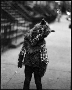 Not a teenage werewolf