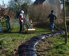 Landscape living willow structures fedge on pinterest for Permaculture bretagne