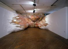 Henrique Oliveira at the RIce Gallery