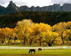Utah  #ridecolorfully