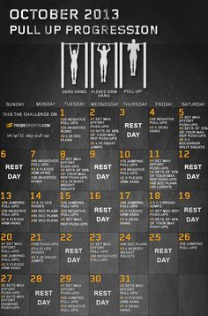 Have you started the 31 day pull up progression Challenge yet?