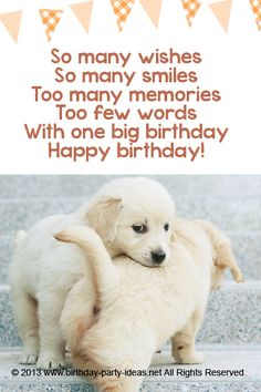 So many wishes So many smiles Too many memories Too few words With one big birthday #cute #birthday #sayings #quotes #messages #wording #cards #wishes #happybirthday