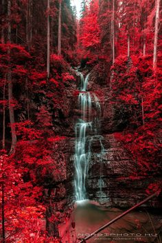 Waterfall and blazing red autumn forest, Austria.