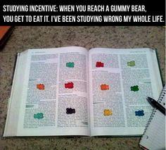 study habits, gummy bears, school, student, study techniques