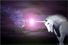 Fantasy horses Unicorn