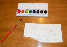 Chameleon Activity-Color of his own