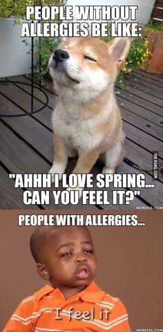 feel, too true, haaaaaa, giggl, funni, something funny, exact, bottom, allergies
