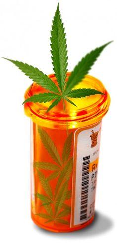 Top Three Myths of the Medical Marijuana Patient
